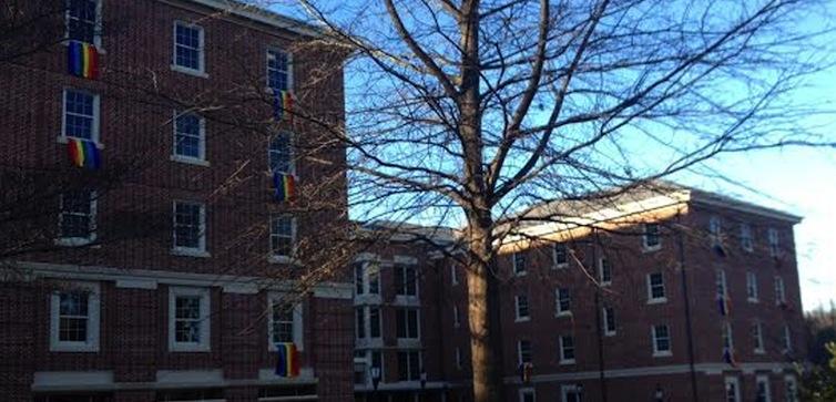 Davidson-rainbow-flags-feat