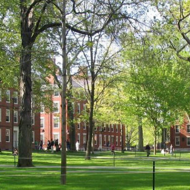 KC Johnson on Harvard's 'Disturbingly Opaque' New Sexual Assault Procedures