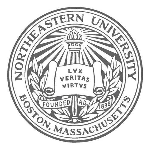 Northeastern university essay