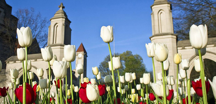 Indiana University-Bloomington-gates-feat