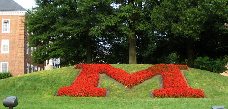 University-of-Maryland-M-flowers-feat