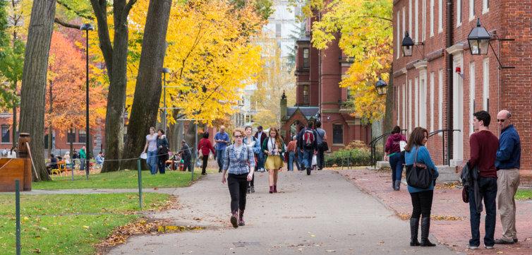 harvard campus feat