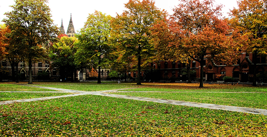 Yale Expresses Support for Faculty at Center of Halloween Email Controversy