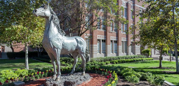university of southern california CREDIT Ken Wolter Shutterstock.com feat