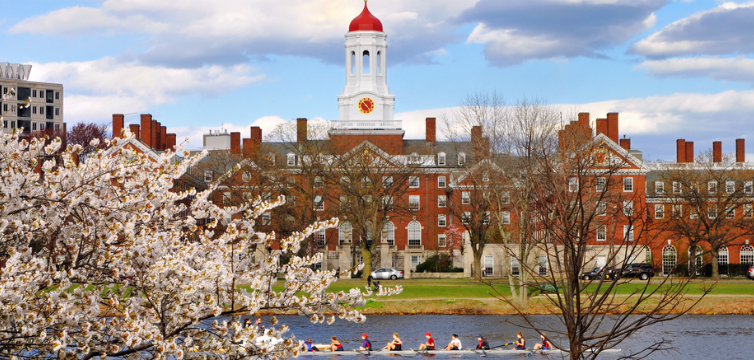 harvard in spring feature