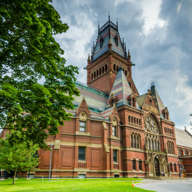 Faculty motion against Harvard blacklist policy kicked to committee led by policy's architect