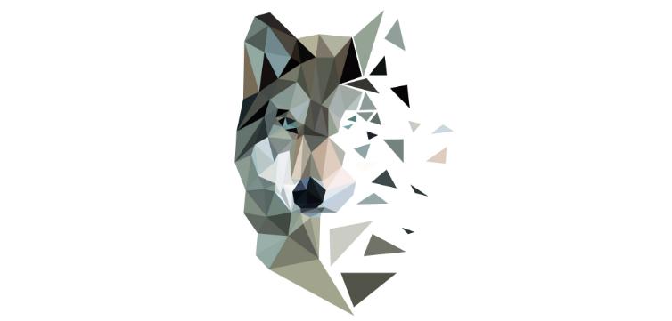 WOLF_FEAT_MargotRobbie