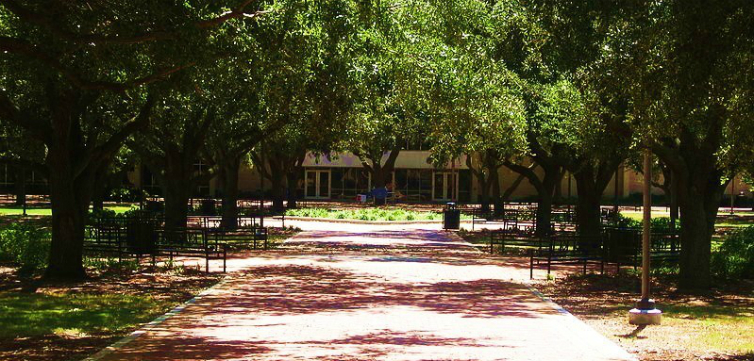 Speech Code of the Month: McNeese State University