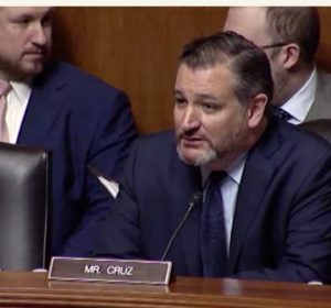 Senator Ted Cruz (credit: Subcommittee on the Constitution)