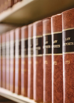 The Law and Free Speech