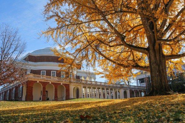 University of Virginia campus in fall