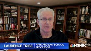 Prof. Laurence Tribe (credit: MSNBC)