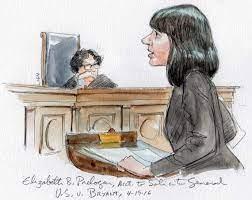 Elizabeth Prelogar, Acting U.S. Solicitor General (Art Lien)